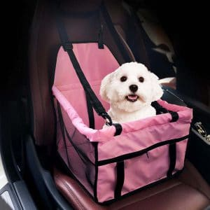 pet carrier for the car
