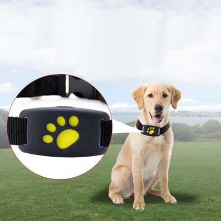 GPS Tracking Collar for dogs
