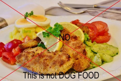 Food scrapes from the table are not dog food
