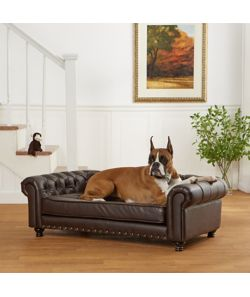 dog sofa for your four legged friend