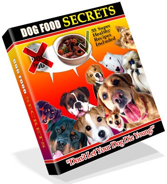 My Dog Food Recipes