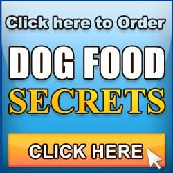 Home made dog food recipes