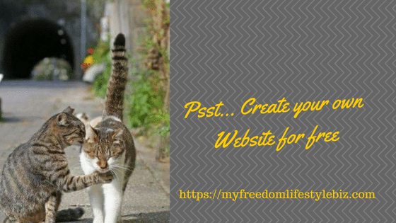 Psst... Create your own Website for free