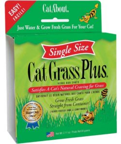 Cat Grass for your cat