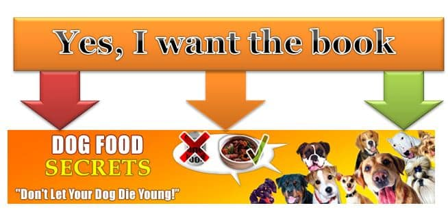 The dog food secret a guide to healthy food