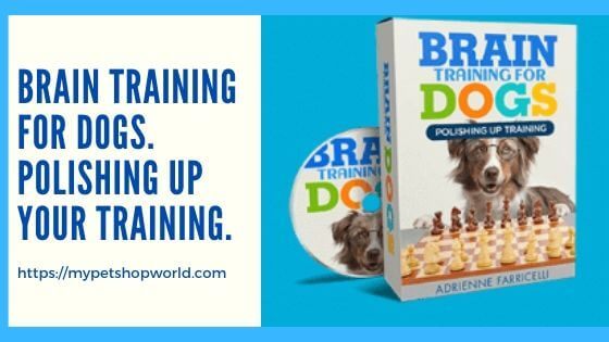 Braintraining for dogs by adrienne faricelli