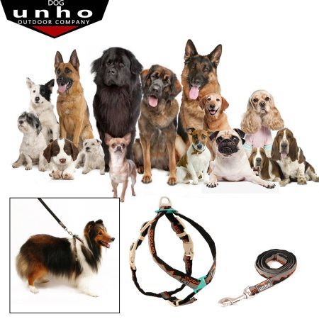 Dog training leash for different dog breeds