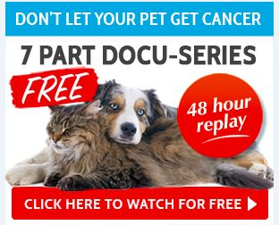 truth about pet cancer