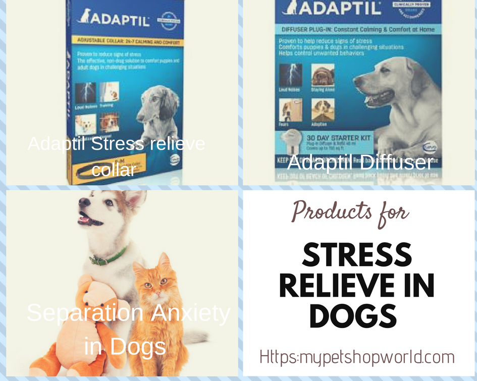 Adaptil Stress relieve collar and diffuser for dog separation anxiety