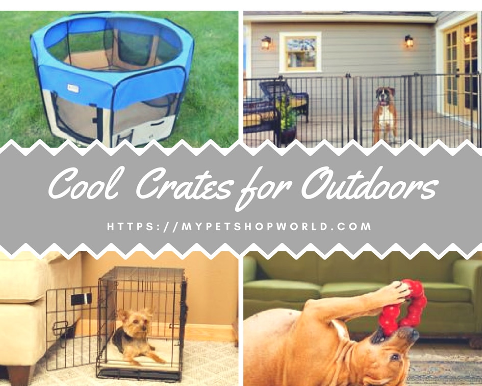 Cool Crates for outdoors