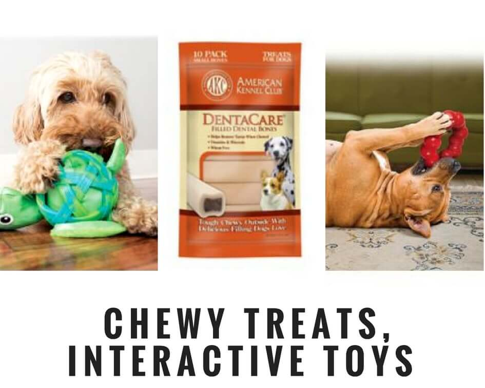 crate training your dog reward him with treats