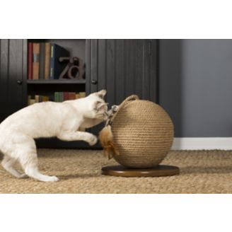 cat scratch sphere with toy