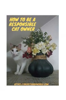 deadly plants for your cat