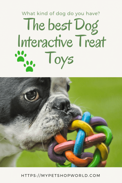 The best Dog Interactive Treat Toys 1
