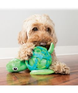 Chewy dog toys for pups