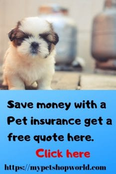 Petco Pet insurance the perfect solution