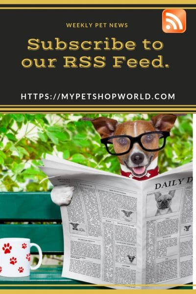 My petshopworld has RSS Feed