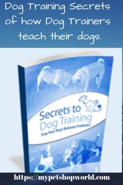 Dog Training secrets now available