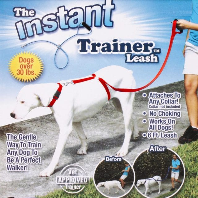 dog trainer leash for puppies