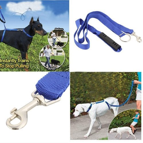 Instant dog training leash no more pulling