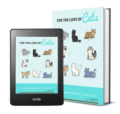 For the love of your cat