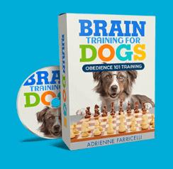 Bonus 2 of Brain Training for dogs