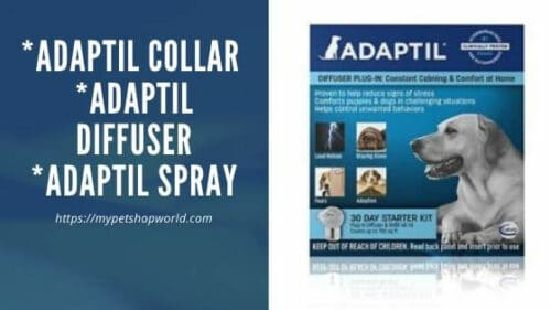 Adaptil Diffuser helps for Pets to calm down