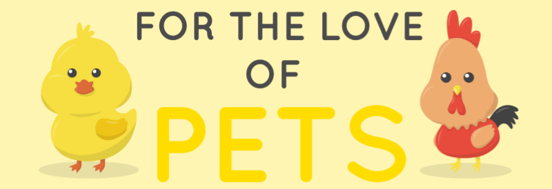 For the love of our pets