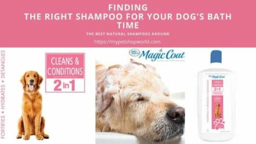 Magic coat conditioner and shampoo for your dog